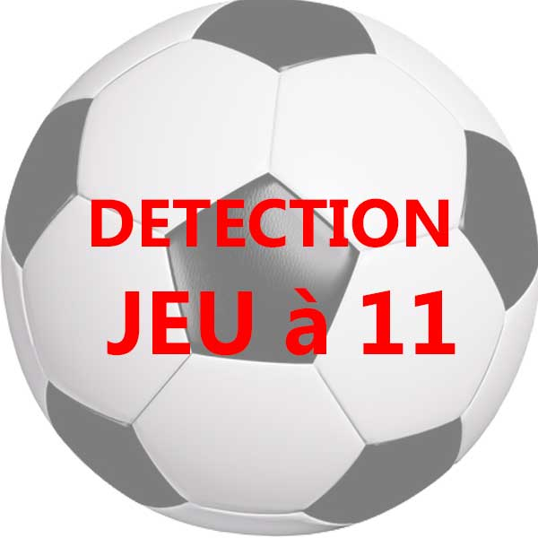 DETECTION JEU A 11 2020 2021